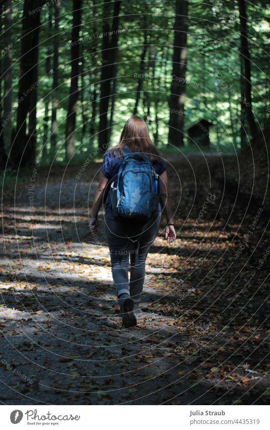 Wandern im Wald Rhön herbstlich Herbslaub Spätsommer Rucksack Rucksackwandern rucksacktourist Lichteinfall Sonnenlicht Schattenspiel laufen Bewegung Natur grün