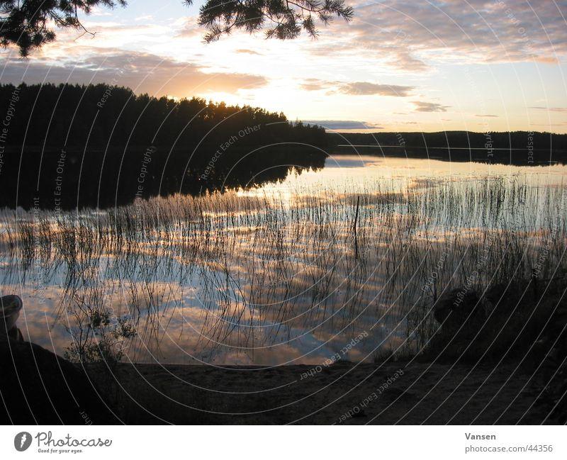 Abendhimmel über Schweden Wasser Sonne rot Wolken Schilfrohr