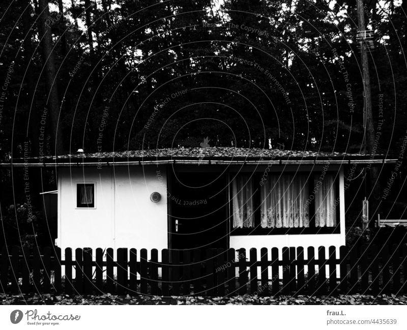 Datsche Ferienhaus Ostsee Wald Zaun Haus Wochendhaus Mecklenburg-Vorpommern