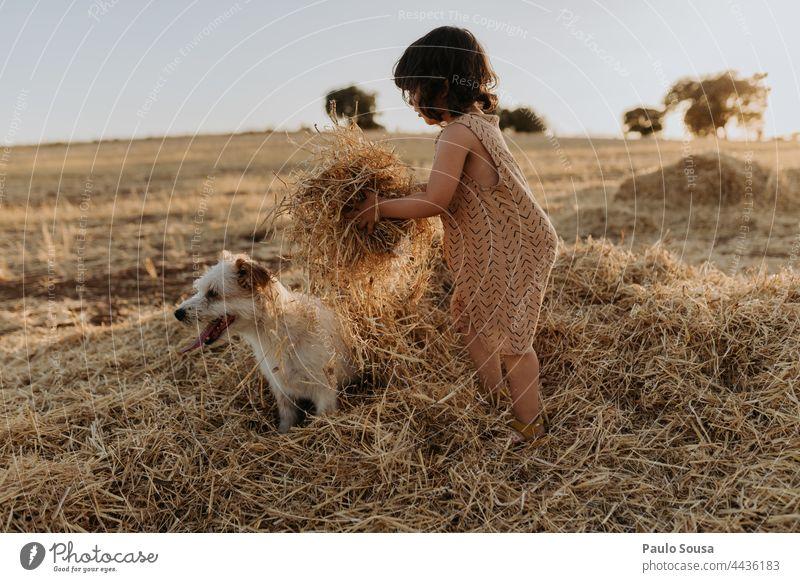 Nettes Mädchen spielt mit Hund auf dem Feld Kind Kindheit 1-3 Jahre Kaukasier authentisch Haustier Zusammensein Zusammengehörigkeitsgefühl Farbfoto Fröhlichkeit