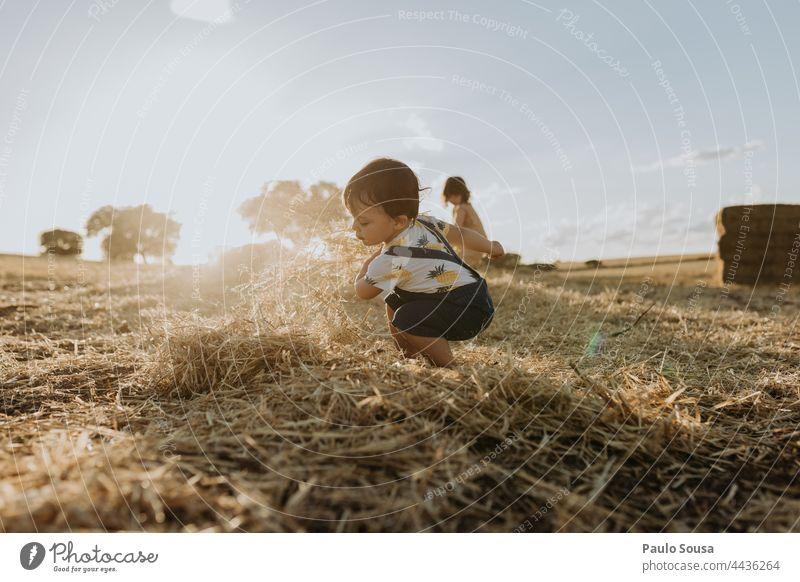 Kind spielt mit Heu Kindheit Feld 1-3 Jahre Kaukasier Geschwister Familie & Verwandtschaft Glück Kinderspiel Tag Fröhlichkeit Farbfoto Freude Kleinkind