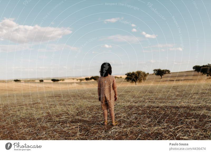 Rückansicht eines Mädchens, das auf dem Feld steht Kind 1-3 Jahre Kaukasier Sommer Spielen Natur Tag 3-8 Jahre Mensch Außenaufnahme Farbfoto Kindheit Freiheit