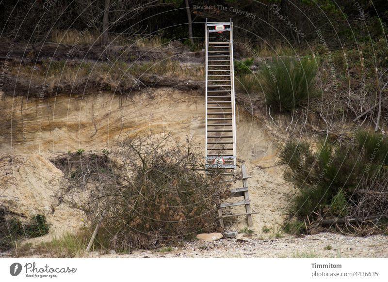 Vorsicht! ADGANG FORBUDT Leiter Verbot Hinweisschild Verbotsschild Strand Düne Abbruchkante Gebüsch Sand Steine Dänemark Betreten verboten