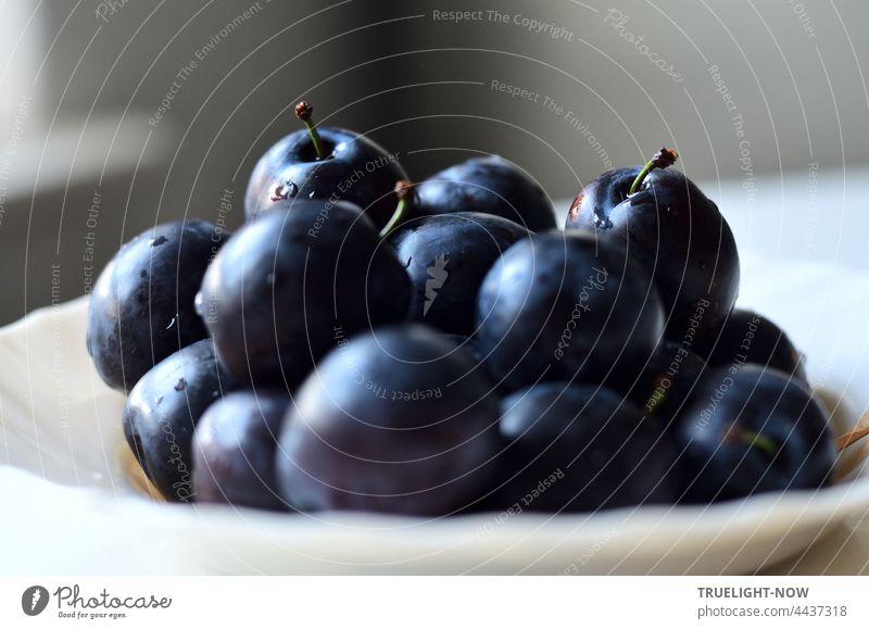 Die Pflaumen sind reif. Bio und frisch gewaschen, schmecken sie nach Herbst Nahaufnahme Obst Steinobst blau Tageslicht Teller mit Stiel lecker süß saftig Frucht