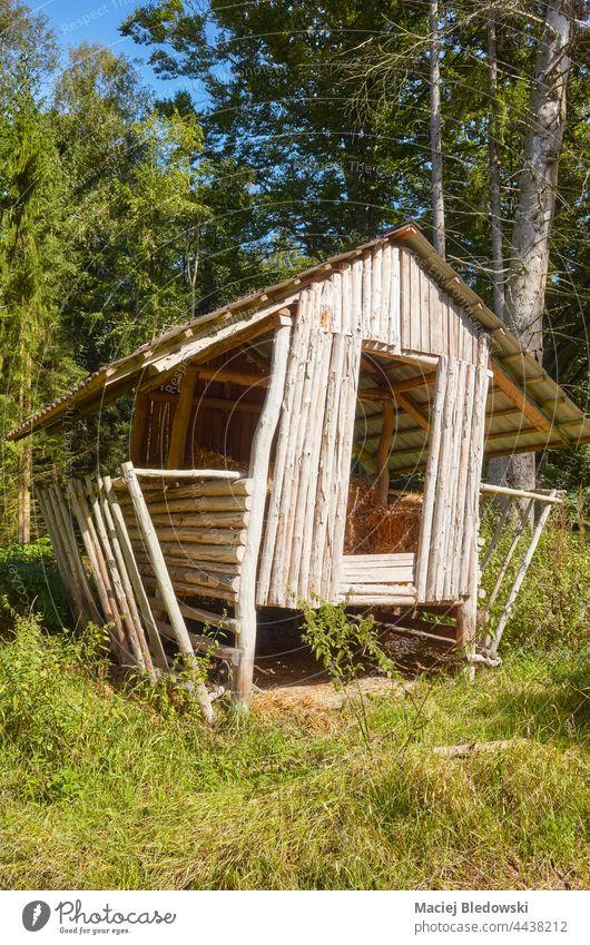 Hölzerne Heuraufe zur Lagerung im Wald. Zuführung Ablage Natur Holz Futtermittel wild Tierwelt grün Gras