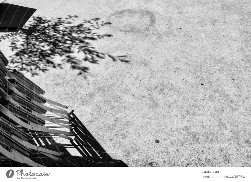 Am Morgen danach.... vor dem Straßencafé sind die Stühle noch hochgeklappt; dazu der Schatten eines kleinen Olivenbaums, eingesperrt im engen Topf Szene Stadt