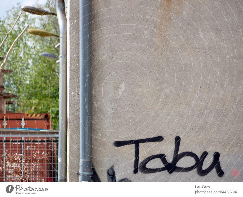 Tabu - Graffiti an einem leerstehenden Haus Schrift Schriftzeichen Gebäude Wand Buchstaben Leerstand Wohnungsbau Wohnungsnot Verfall verfallen