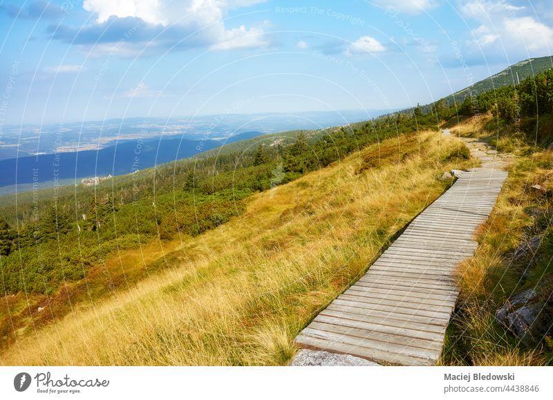 Holzbrückenweg im Riesengebirge, Polen. Landschaft Natur Berge u. Gebirge Weg Brücke Nachlauf im Freien Tal Baum Fernweh Szklarska Poreba malerisch Himmel