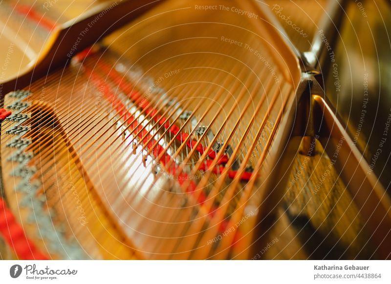 Blick in einen Flügel Ensemble flügel kammermusikfestival klavier Musik musikprobe Klavier saiten musikinstrument Instrument Keyboard