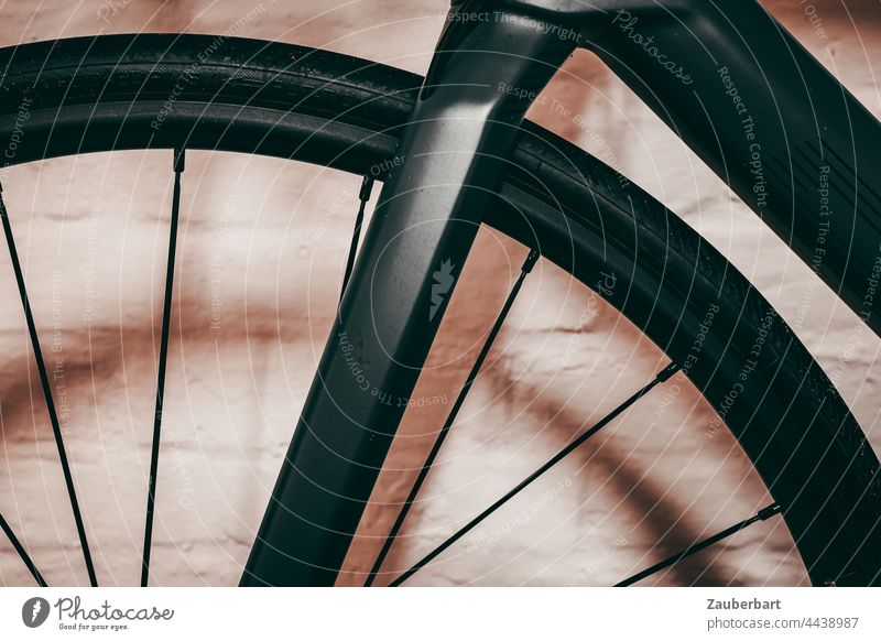 Gabel und Vorderrad eines Rennrads vor Wand Felge Speichen Karbon dunkelgrau Sport Fahrrad Radfahren abstrakt Halbkreis Reifen Fahrradfahren Fahrradreifen