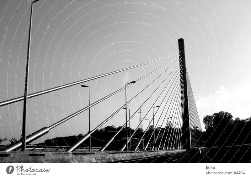 Brücke Bauwerk Architektur Straße komplex Laterne Brückenkonstruktion Schwarzweißfoto