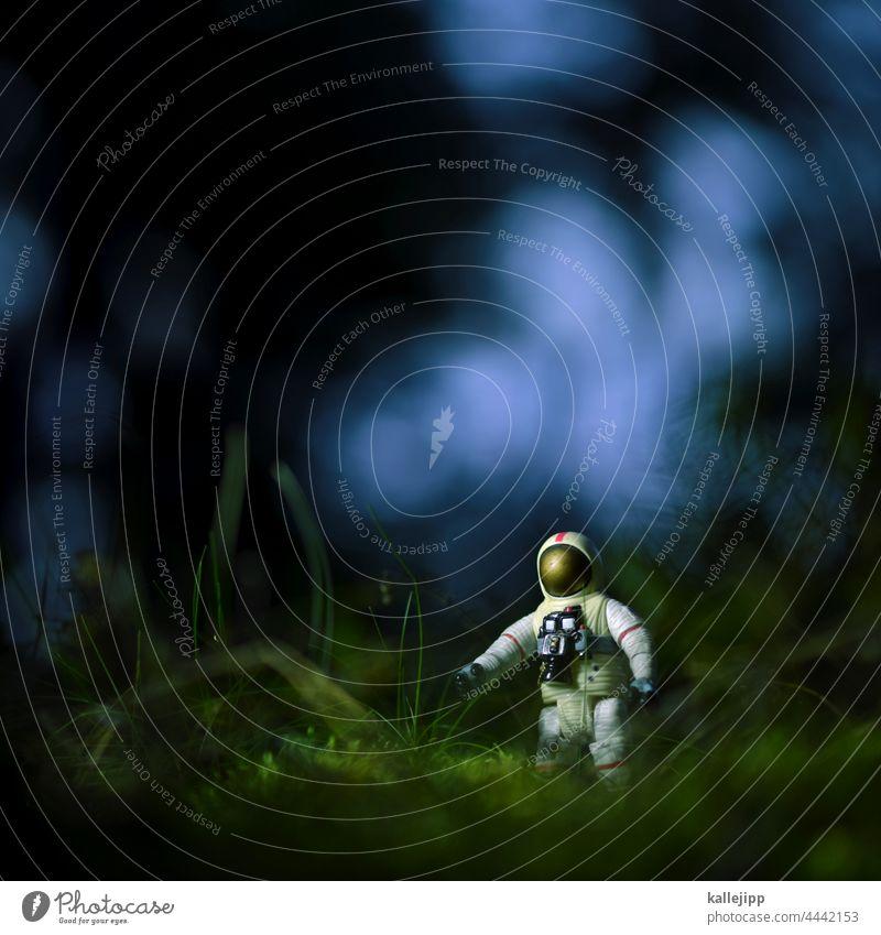 moosmission Pilz Fliegenpilz Astronaut riesenpilz Natur Farbfoto Pflanze Außenaufnahme Herbst Gift Wald Umwelt Waldboden Schwache Tiefenschärfe Nahaufnahme