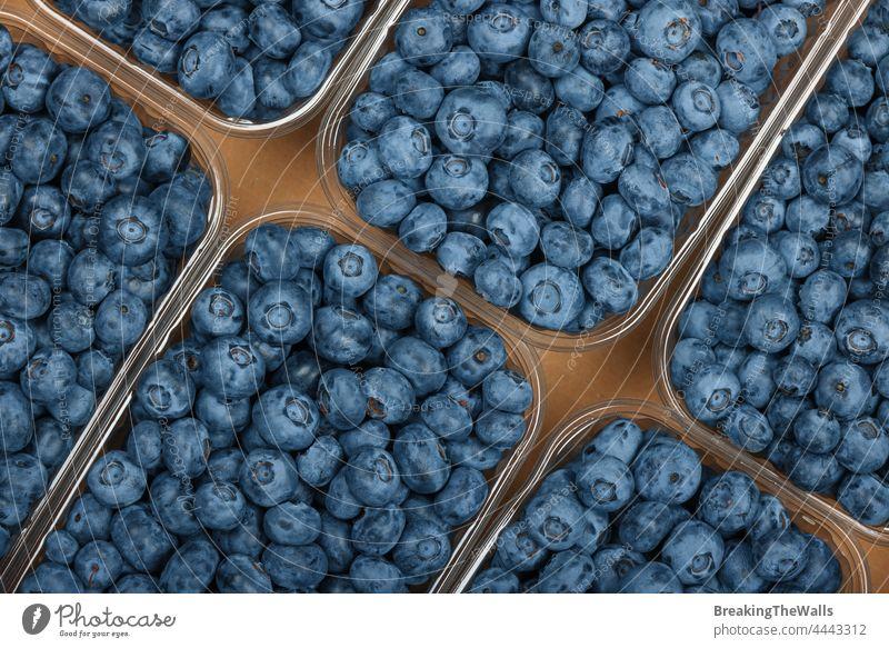 Nahaufnahme einer frischen Blaubeere in einem Behälter Blaubeeren Beeren Kasten Container Kunststoff Schachtel Karton braun Frucht produzieren Lebensmittel reif
