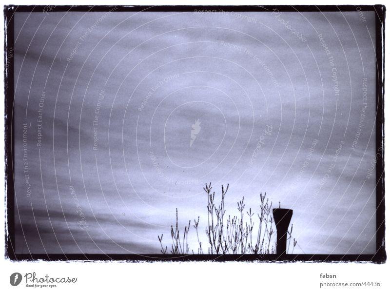 BLACK CHIMNEY Himmel weiß schwarz Wolken grau Stimmung Verkehr Ast Schornstein