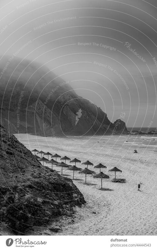 Bast Sonnenschirme am Strand in schwarz weiß Monochrom Meer Nebel Briese Ozean Ferien & Urlaub & Reisen Sand Klippe Küste Landschaft sanft neblig Natur Himmel