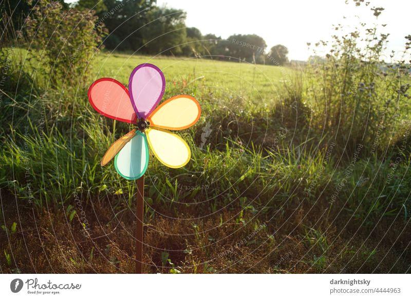 Buntes kleines Windrad vor einer grünen Wiese bei Gegenlicht, Spielzeug als Metapher Windkraft Ökologie Umwelt erneuerbare Energien Freude Natur Regenbogen