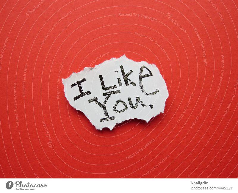 I like you. mögen Freundschaft Sympathie Liebe Gefühle Freunde Zusammensein Lebensfreude Partnerschaft Vertrauen Geborgenheit Glück Frühlingsgefühle Farbfoto