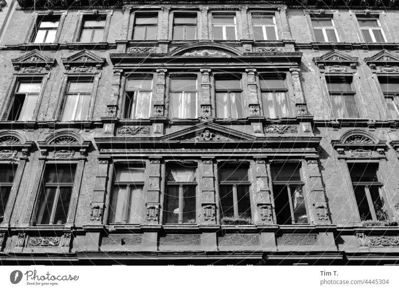 eine schöne alte Hausfassade Halle (Saale) Deutschland Halle Saale Sachsen Anhalt Menschenleer bnw Stadt Halle/Saale Fassade Architektur