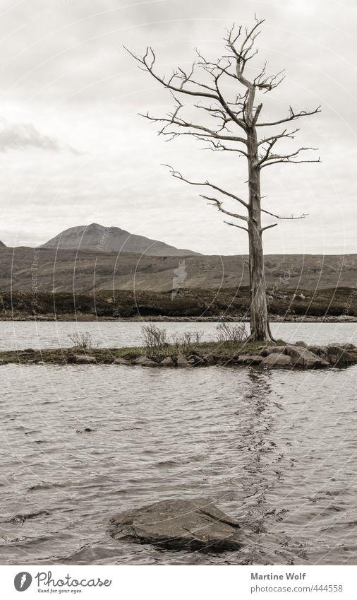 lost landscape III Natur Ferien & Urlaub & Reisen Baum Landschaft ruhig See Ausflug Europa Vergänglichkeit Abenteuer Hügel Schottland Großbritannien