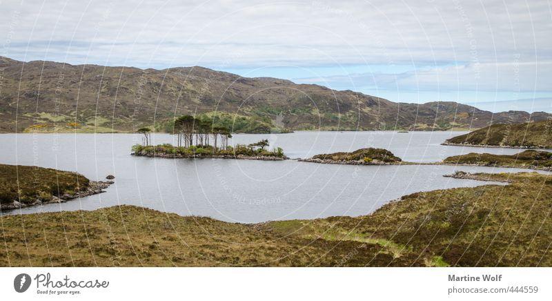 lost landscape Ferien & Urlaub & Reisen Ausflug Abenteuer Freiheit wandern Natur Landschaft Hügel Insel See Loch Assynt Großbritannien Schottland Europa ruhig