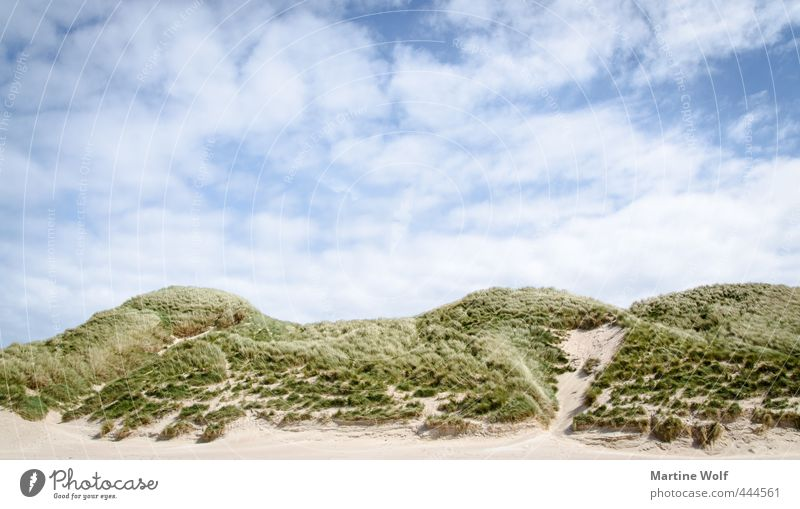 The Dunes II Ferien & Urlaub & Reisen Ausflug Abenteuer Sommer Sommerurlaub Strand Natur Landschaft Himmel Hügel Düne Dünengras Faraid Head Schottland