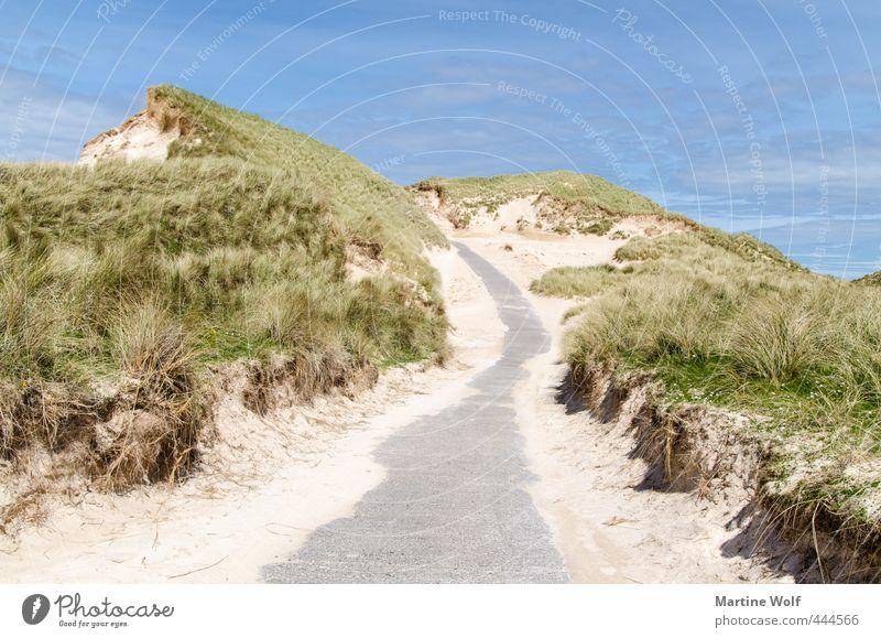 The Dunes Ferien & Urlaub & Reisen Ausflug Sommer Sommerurlaub Strand Natur Landschaft Sand Düne Dünengras Faraid Head Schottland Großbritannien Europa Straße