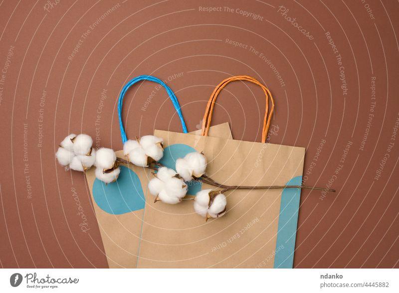 Papiertüte und ein Zweig mit Baumwollblüten auf hellbraunem Hintergrund, Zero Waste Ackerbau Ball beige Blütezeit boll Botanik Ast Blütenknospen Zusammensetzung