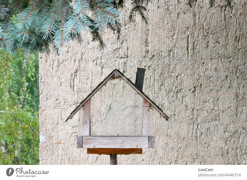 Leerstand - alle sind ausgeflogen Haus leeres Haus Verlassenes Haus verlassenes Gebäude Vogelhäuschen Vogelhaus Wohnung Wohnungssituation Wohnungsnot