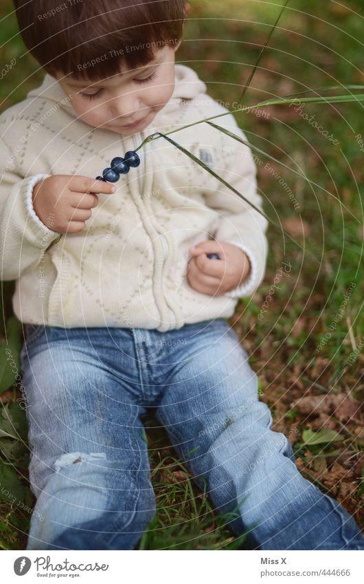 Heidelbeeren Mensch Kind ruhig Spielen Gesunde Ernährung Junge Essen Gesundheit Lebensmittel Frucht Kindheit sitzen frisch Ausflug süß