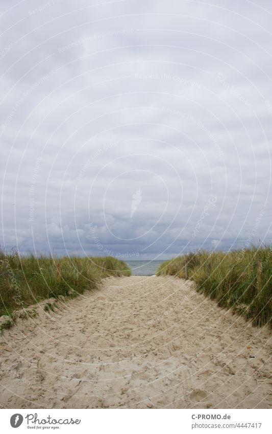 Strandaufgang Kühlungsborn Düne Dünengras Strandsand Sand Himmel Meer Menschenleer Ostsee Wolken bewölkt bewölkter himmel