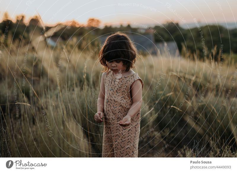 Niedliches Mädchen in den Feldern stehend Sonnenuntergang Abenddämmerung Kind Kindheit 1-3 Jahre Kaukasier Glück Fröhlichkeit Tag niedlich Mensch Außenaufnahme