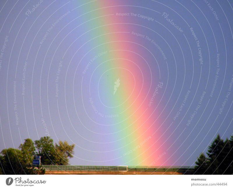 den regen gebogen Himmel Baum Farbe Regenbogen Bogen Naturphänomene