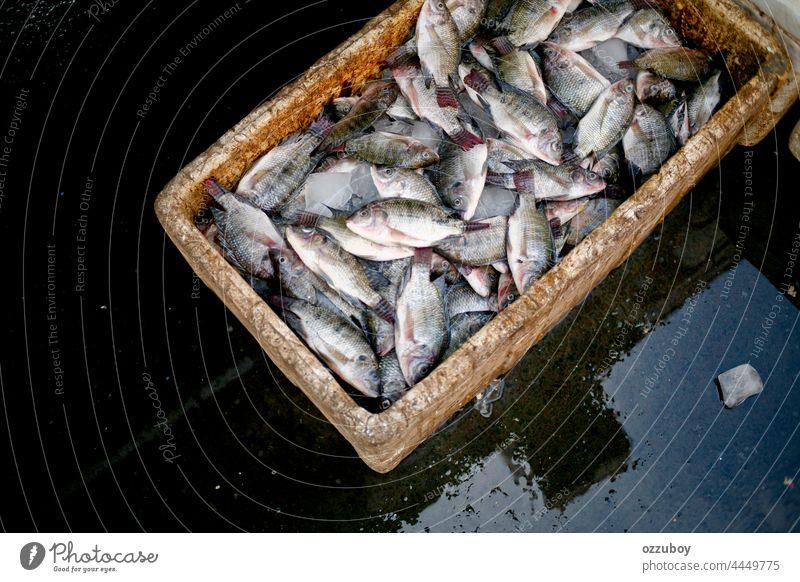 Kisten voller frischer Nil-Tilapia werden auf dem Markt verkauft Fisch Lebensmittel Meeresfrüchte Frische Fischen Bestandteil roh Buntbarsch Tier Gesundheit