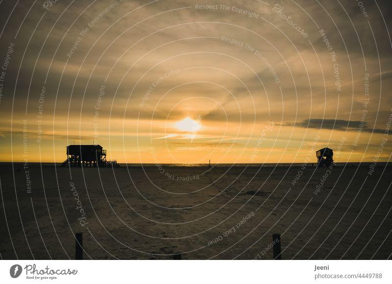Die große Weite und der Sonnenuntergang an der Nordsee Nordseeküste Norden Nordseestrand Urlaub Urlaubsstimmung Ferien & Urlaub & Reisen Schleswig-Holstein