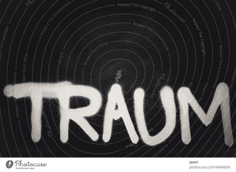 TRAUM Traum Traumwelt träumen traumhaft Licht hell dunkel Kontrast Kontrastreich Träume Träumer Buchstaben Wort Text Schriftzeichen Druckschrift Letter schwarz