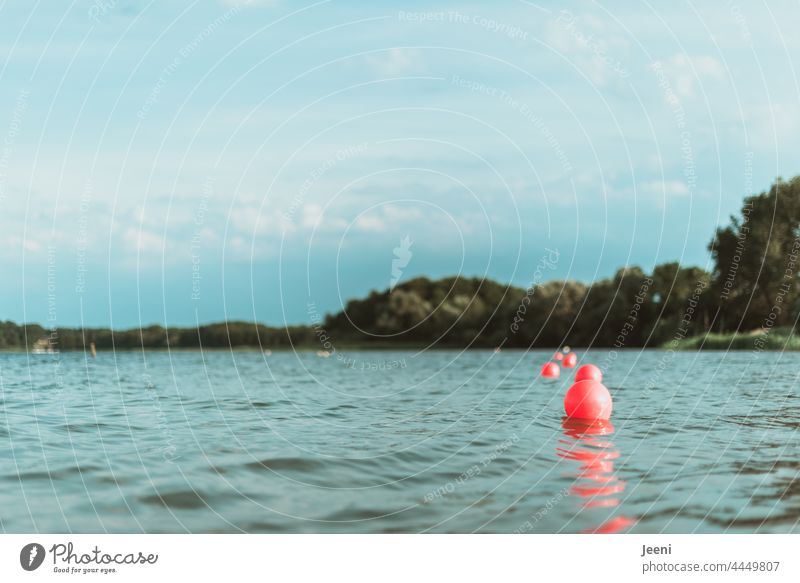 Nah an der Wasseroberfläche nass blau See Nichtschwimmerbereich Schwimmer schwimmerbecken nichtschwimmer Abgrenzung Boje Bojen rund viele Wellen Wellengang