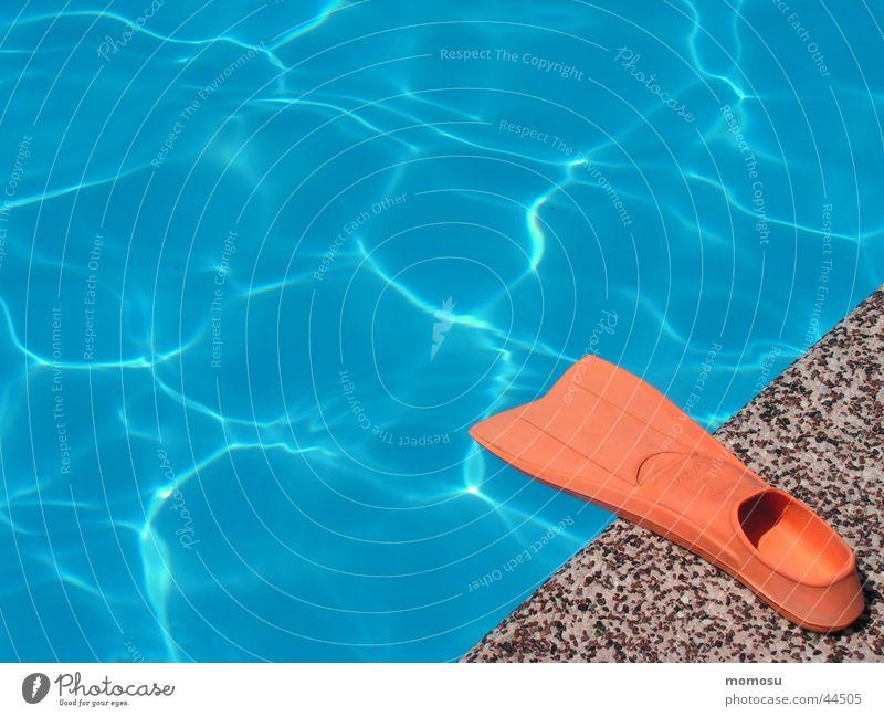 am Beckenrand Wasser Sommer Ferien & Urlaub & Reisen Sport Wärme nass Schwimmbad Physik Schwimmhilfe