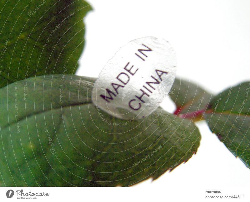 MADE IN CHINA Rosenblätter Blatt China Produktion Ausland obskur made