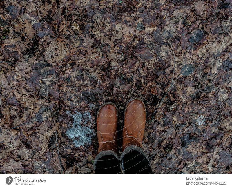 Hohe Winkelansicht von Stiefeln und Laub, Herbstblätter Blätter Herbstlaub Herbstfärbung Laubwerk herbstlich Natur Blatt Herbststimmung Herbstwetter