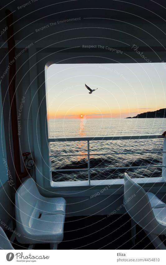 Ausblick auf Sonnenaufgang und Möwe von einer Fähre aus Meer Wasser morgens Horizont Stimmungsvoll Himmel Vogel Schifffahrt Freiheit Ausflug Bootsfahrt Sitze