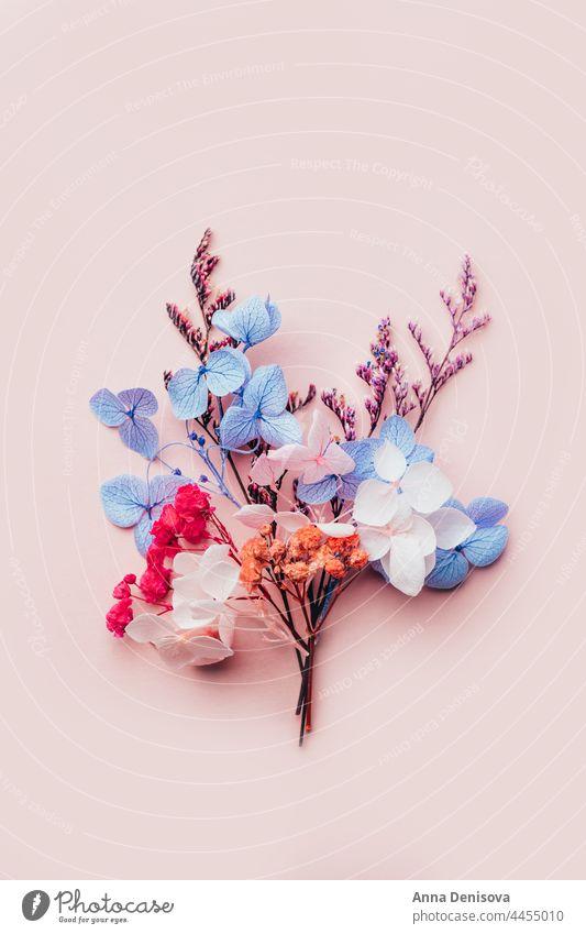 Biologisch abbaubares Konfetti aus echten Trockenblumen getrocknet keine Verschwendung Blume Pflanze umweltfreundlich geblümt Ordnung Blumenstrauß Requisiten