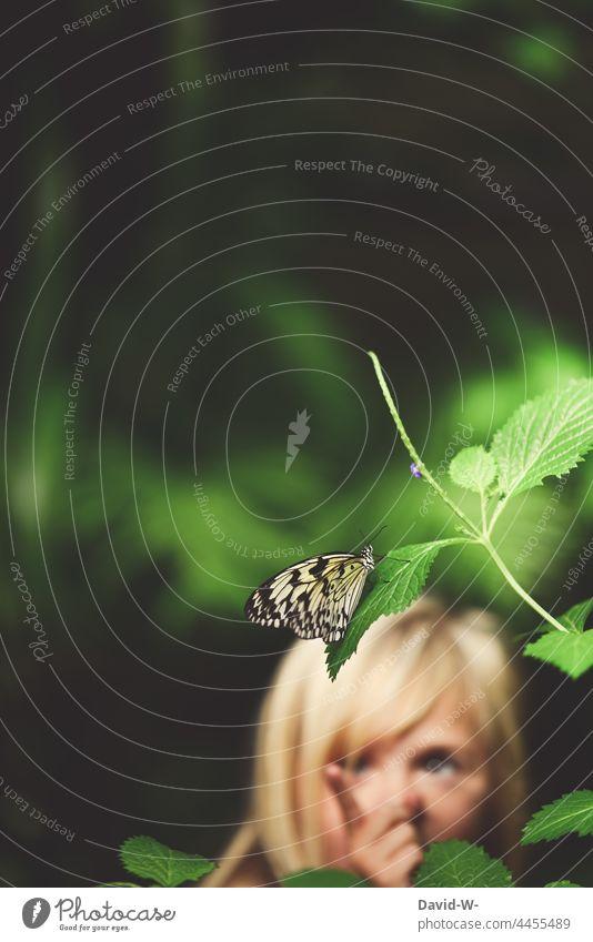 Kind entdeckt einen Schmetterling Entdeckung fasziniert begeistert Tier interessiert beobachten erkunden Natur Mädchen neugierig niedlich