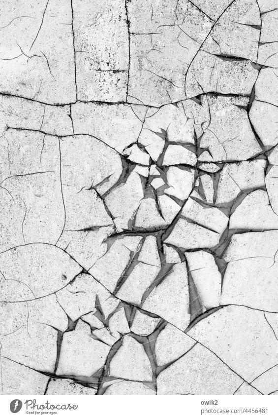 Gerissen Wand Risse Spuren Vergänglichkeit bizarr durcheinander grau trocken abblättern Zahn der Zeit Detailaufnahme Strukturen & Formen alt Nahaufnahme Verfall
