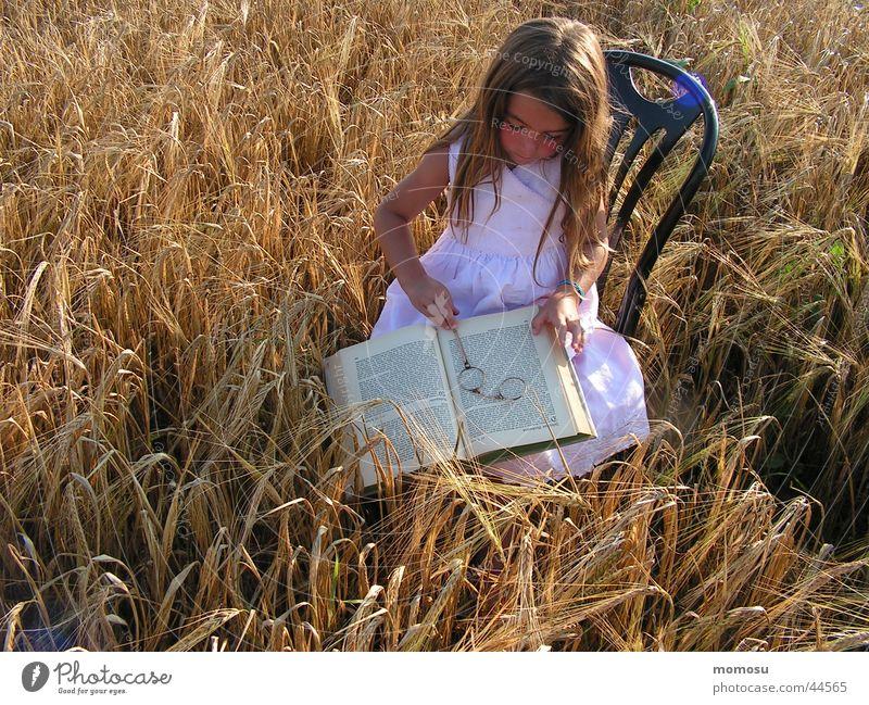 feld - studie Lorgnon Kind lesen Hand Buch Mädchen Sommer Sessel lernen Haare & Frisuren Monokel Getreide