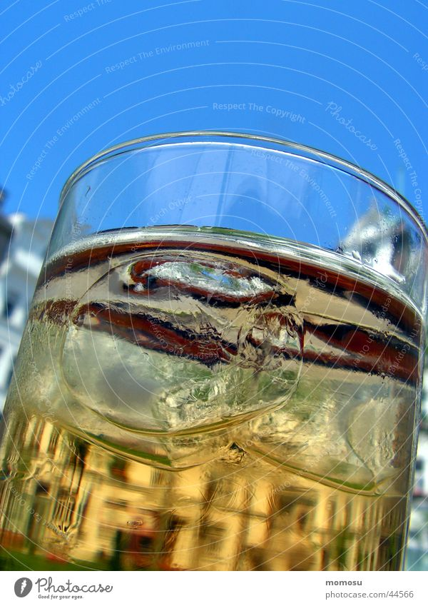 vienna on the rocks Himmel Gebäude Glas Getränk Alkohol Wien Eiswürfel Eistee