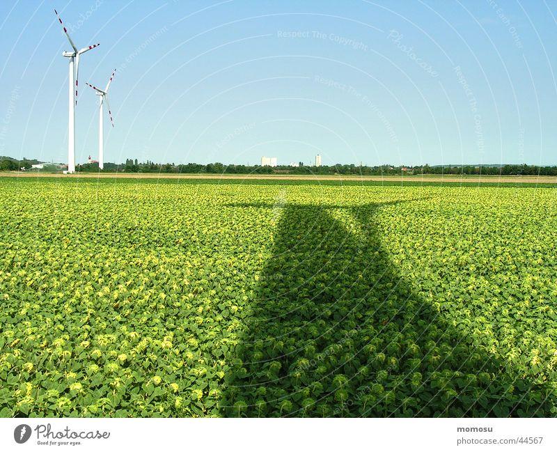 ...energieschatten Feld Sonnenblume Licht Wissenschaften Windkraftanlage Energiewirtschaft Schatten Himmel