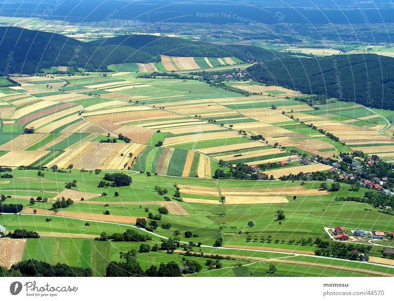 weitsicht Feld Wiese Wald Aussicht Panorama (Aussicht) Vogelperspektive Berge u. Gebirge überblicken Ferne groß