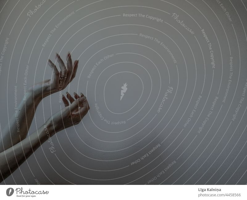 Zwei Hände Herbstgefühle Hand Frau Finger Arme Mensch Körperteil geheimnisvoll mystisch Handfläche minimalistisch Handgelenk sehr wenige Hintergrund neutral