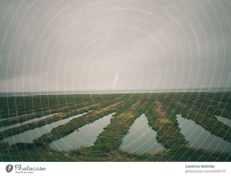 Blick auf das Wattenmeer auf dem Eisenbahndamm Richtung Sylt Landschaft Natur Himmel Sonne Urlaub Reise Erholung Ferien Nordsee Ostsee mystisch stimmung