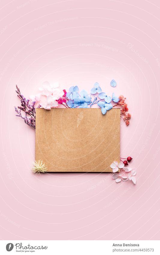 Karte mit Textfeld und echten Trockenblumen getrocknet Blume Pflanze umweltfreundlich geblümt Ordnung Blumenstrauß Requisiten Design natürlich Natur